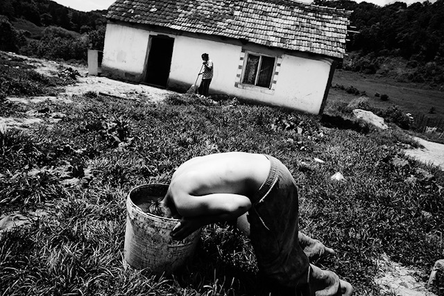 5/27-2010. APOLD,ROMANIA. The Roma in the EU's backyard. Many of the Roma who are now supplanted by the French authorities are originally from Romania. In the village Apold in Romanian Transylvania are still living about 150 Roma people in misery. A young man filled a basin of water for washing hair.